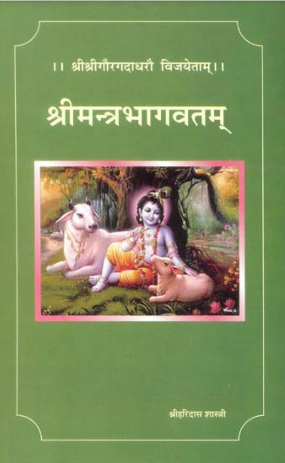 Shri Mantra Bhagawatam Pdf (श्रीमन्त्रभागवतम् )