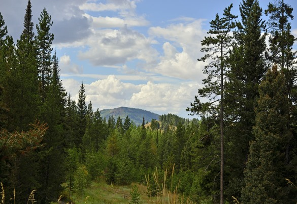 Thayne Mountain View