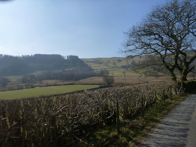Puke hill