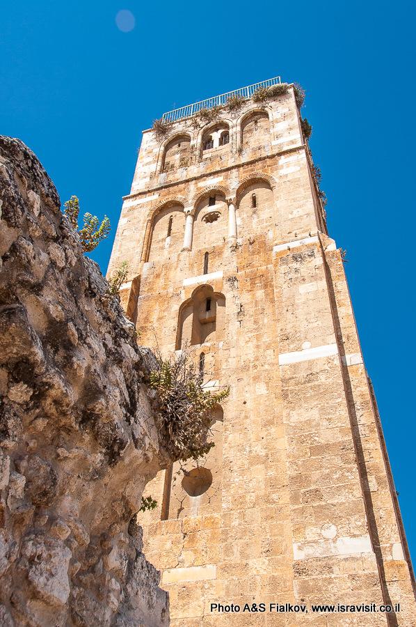 Белая башня в Рамле и сицилийский львинный зев на руинах