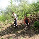 Ольге Шуткиной за помощь в уборке, посадках, а также за многочисленные подарки луковичных и цветущих растений
