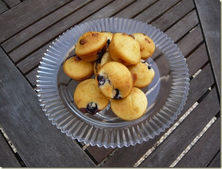 blueberry and white chocolate mini muffins2