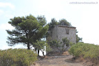 """Casa """"Totara"""" - monte Sorge foto di Domenico Oliveri"""