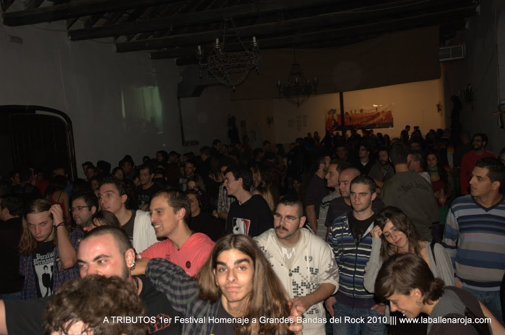 A TRIBUTOS 1er Festival Homenaje a Grandes Bandas del Rock 2010 - DSC_0249.jpg