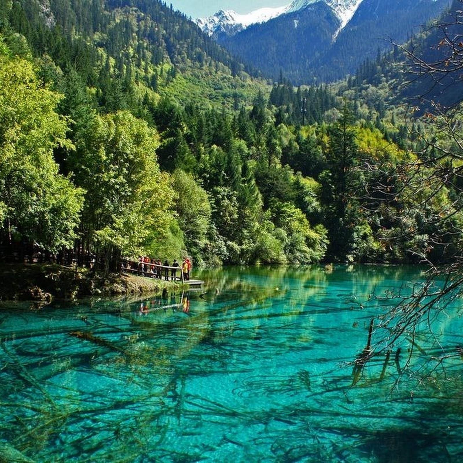 The Alpine Lakes And Waterfalls of Jiuzhaigou