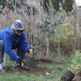 Hammo Fall Planting - Jim Murtagh - BC3G2541.jpg