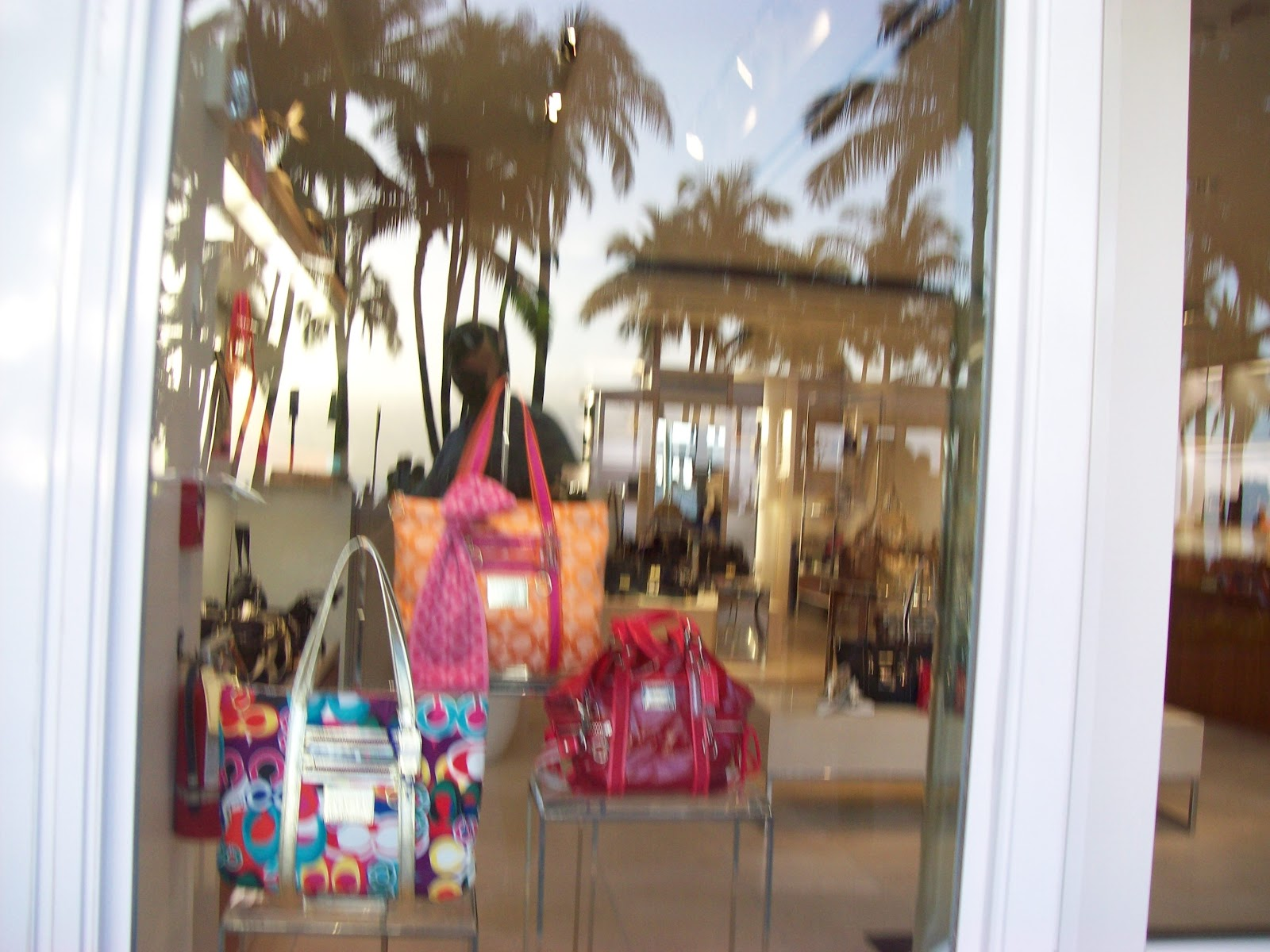 Hawaii Day 2 - 100_6749.JPG
