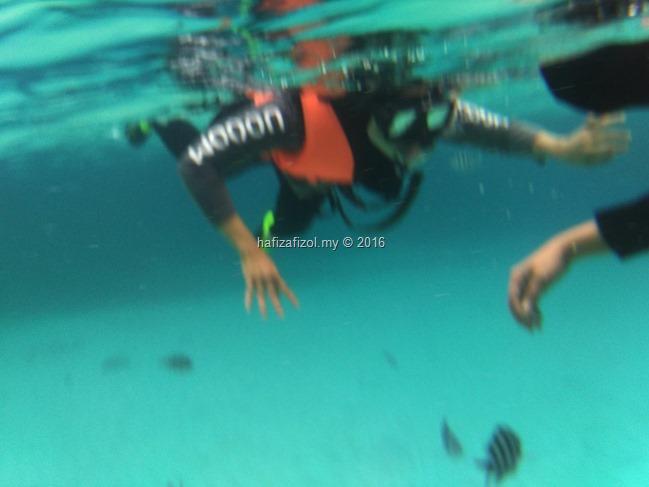 snorkeling pulau redang_2