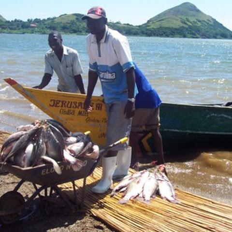 Fishing in Lake Victoria