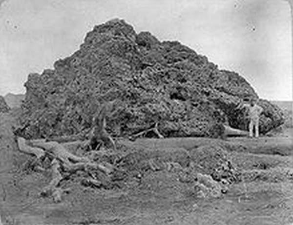 Batu karang yang terdampar di pantai akibat letusan krakatau