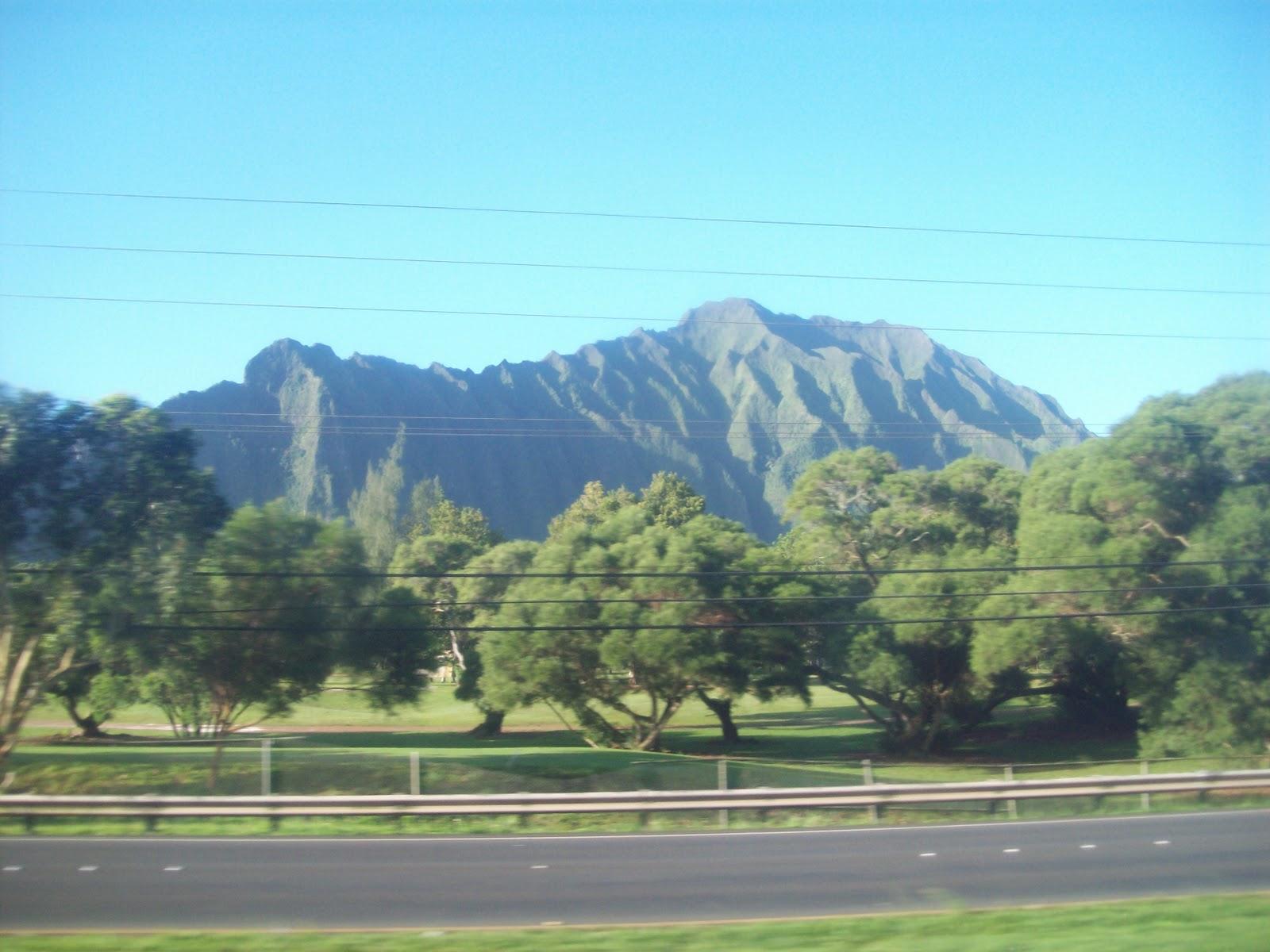 Hawaii Day 3 - 114_1016.JPG