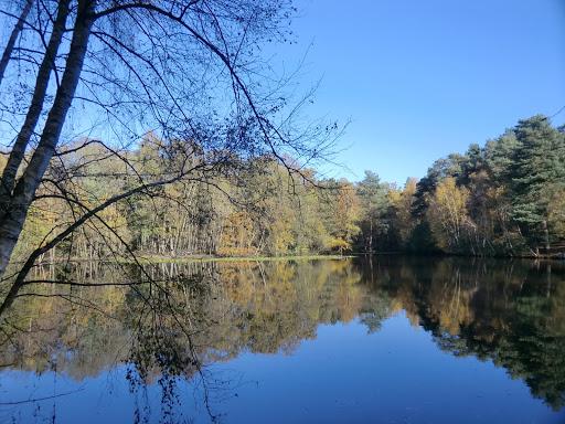 CIMG4926 Heath Pond