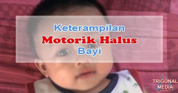Keterampilan Motorik Halus Bayi