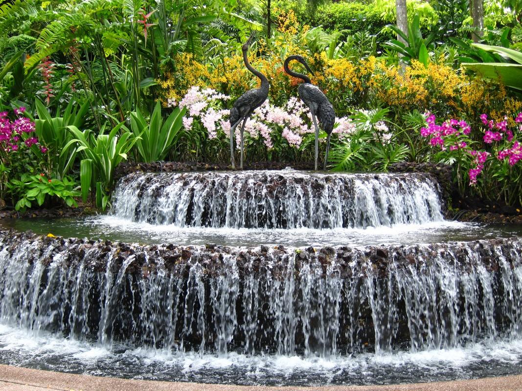 Lucie et r al en tha lande singapour et en indon sie for Jardin botanique singapour