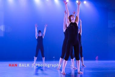 Han Balk Voorster Dansdag 2016-3551.jpg