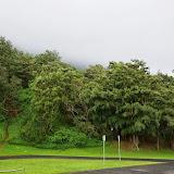 06-18-13 Waikiki, Coconut Island, Kaneohe Bay - IMGP6970.JPG