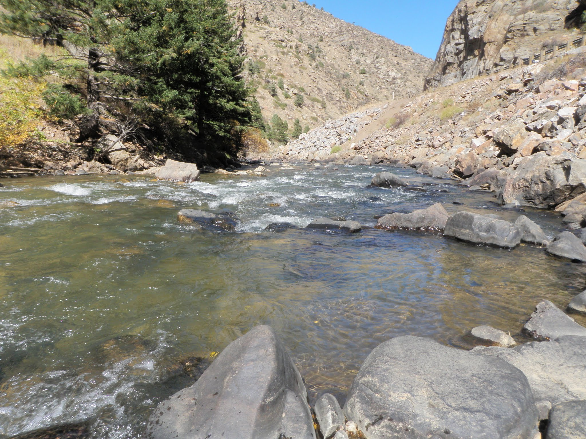 Clear creek 10 12 2015 dave weller 39 s fly fishing blog for Clear creek fishing