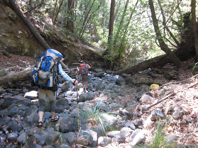 Hiking Gilliam Creek