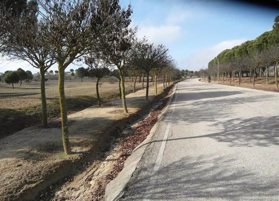 Parque forestal de somosaguas para qu lo habr n hecho en bici por madrid - Viveros pena madrid ...