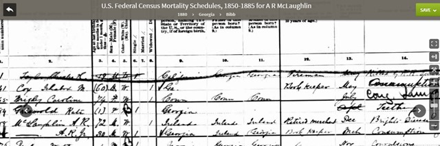 1880mortality-mclaughlin
