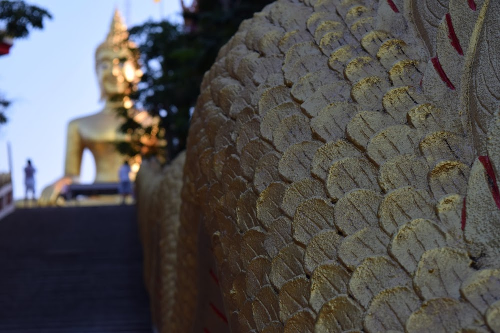 climbing up the stairs to the Big Buddha