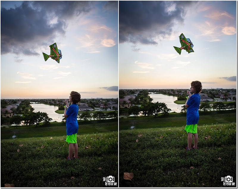Kite Sunset silhouette-8667 (2)