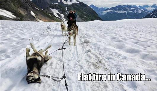 flat-tire-in-canada