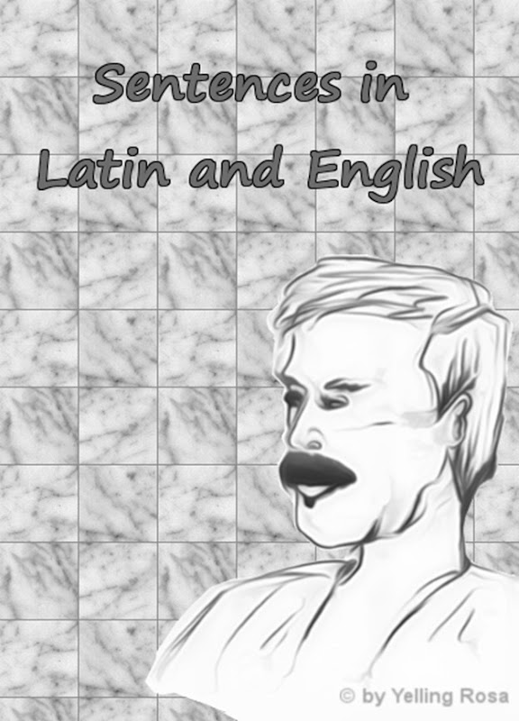Sentences in Latin and English by © Yelling Rosa 002