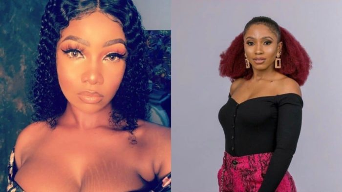 BBNaija Tacha, Mercy and Shatta-Bandle nominated for emerging celebrity of the year at the 'Starzz Awards 2019'