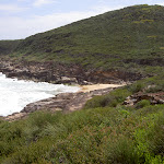 Little Tallow Beach on Bouddi National Park coast (20942)