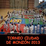 TORNEO CIUDAD DE MONZÓN 2013