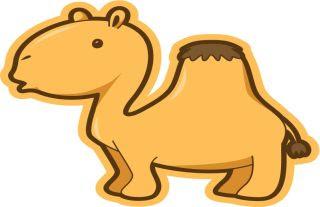 El camello visto por primera vez fabula