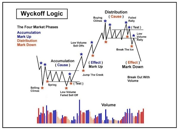Beginner's Guide For Traders About Market Phases and Use Trading Indicators ?