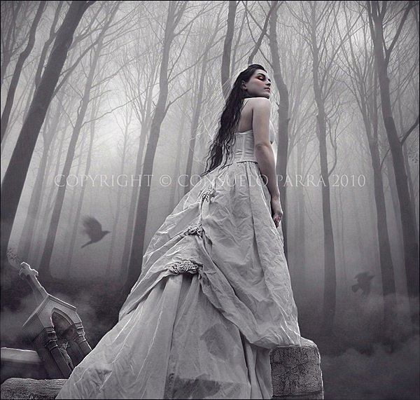 White Princess In The Forest, Celtic And Druids