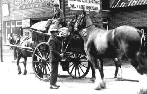 m0465-Horses-and-cart-of-Witham-Cartage-and-Coal-Company-in-Collingwood-Road