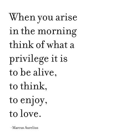 privilige to be alive -- aurelius