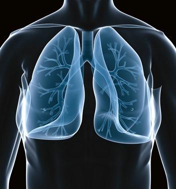 عيادات الأمراض الصدرية والحساسية بمستشفى الياسمين بالمعادي