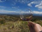Copa de vino en la mano en Tupungato - Mendoza - Argentina