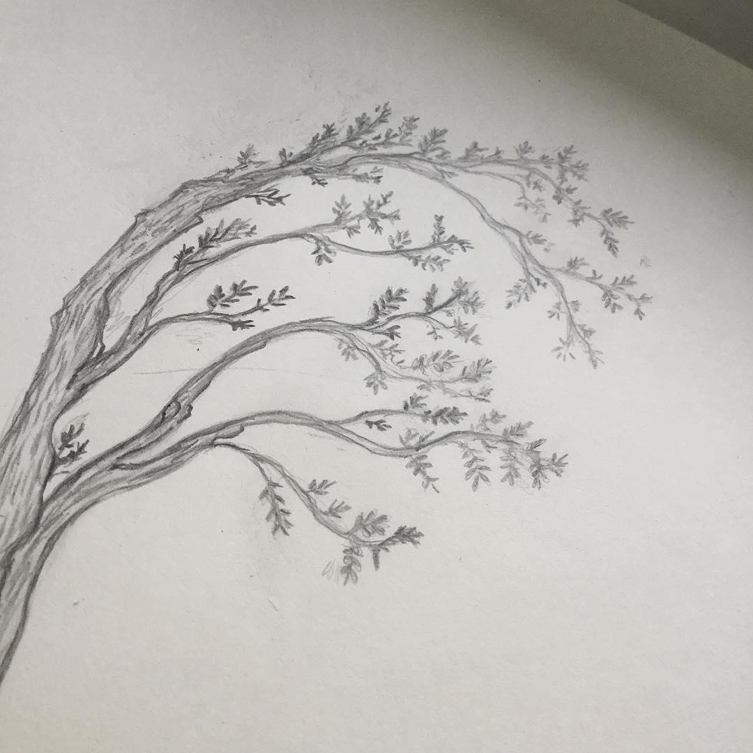dibujos-a-lapiz40