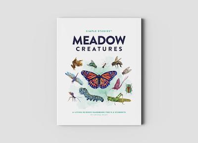 meadow unit studies