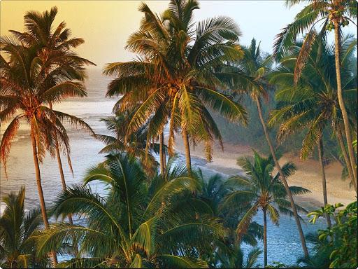 Na Pali Coast, Kauai, Hawaii.jpg