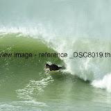 _DSC8019.thumb.jpg