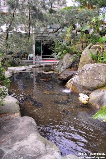 沙里仙溫泉度假村池塘