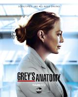 Decimoséptima temporada de Grey's Anatomy