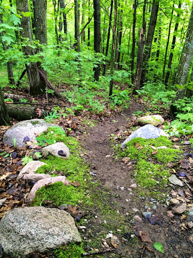 """""""Fargo"""" section of singletrack cleared after a two year hiatus."""