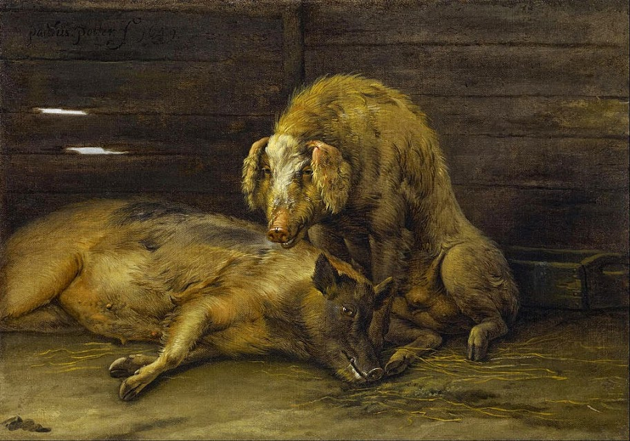 Paulus Potter - Two Pigs in a Sty - Google Art Project.