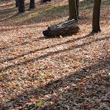 SingiDigital 28.12.2011 - 27.jpg
