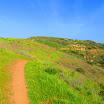 santiago-oaks-IMG_0445.jpg