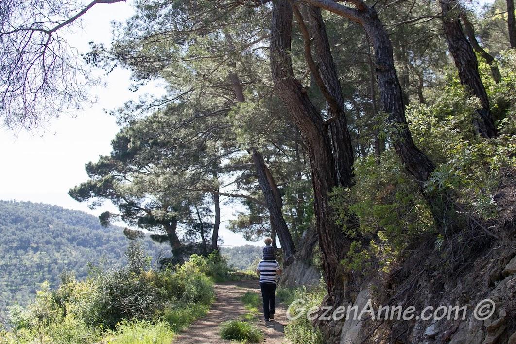 Yeşilyurt'ta ormanlarda dolaşırken