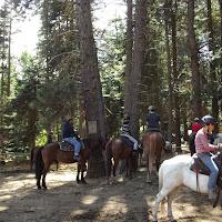 Camp Baldwin 2014 - DSCF3674.JPG